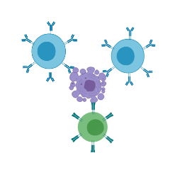 Chimeric Antigen Receptor T cells (CAR T-cells)
